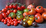 Mixed collection of tomatoes (9 packets-400+ seeds)- round, long, cherry, heirloom mixed combo (red and yellow color tomatoes only)