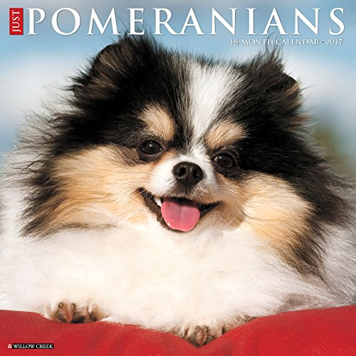 Just Pomeranians 2017 Wall Calendar (Dog Breed Calendars)