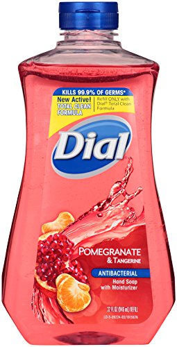 dial-antibacterial-liquid-hand-soap-refill-pomegranate-tangerine-32-ounce