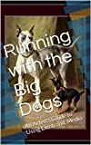 Running with the Big Dogs: An Artists Guide to Using Electronic Media