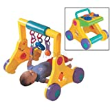 Tomy Multi-Gym and Walker