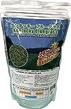 西洋芝種子 ケンタッキーブルーグラス 1L詰