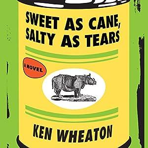 Sweet as Cane, Salty as Tears Audiobook