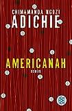 Americanah: Roman (Literatur)