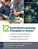 img - for 12 Brain/Mind Learning Principles in Action: Teach for the Development of Higher-Order Thinking and Executive Function by Renate Nummela Caine (2015-09-29) book / textbook / text book