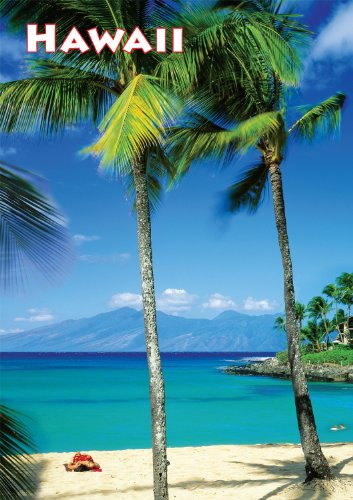 Buffalo Games Large Piece Travel, Hawaii - 300pc Jigsaw Puzzle