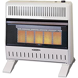 Sure Heat 26,000 BTU Infrared Dual Fuel Gas Space Heater with Thermostat and Blower