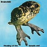 Healing of the Lunatic Owl by BRAINCHILD (2013-01-08)