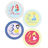 Fairy Tale Princesses Monthly Onesie Sticker - Waterproof And Durable - Includes 1-12 Month Stickers