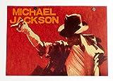 マイケルジャクソン MICHAEL JACKSON ポスター B3 サイズ SE06