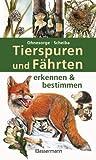 Tierspuren und Fährten erkennen & bestimmen