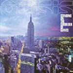 Standing on the Shoulder of Gi [Vinyl...