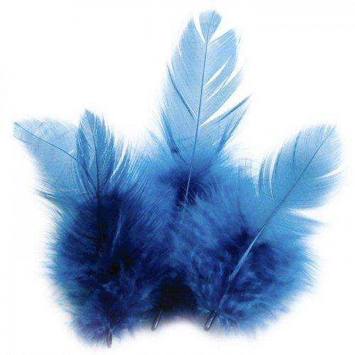 Piume di gallo 10 cm - turchese