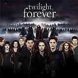 The Twilight Saga - 2014 Calendar