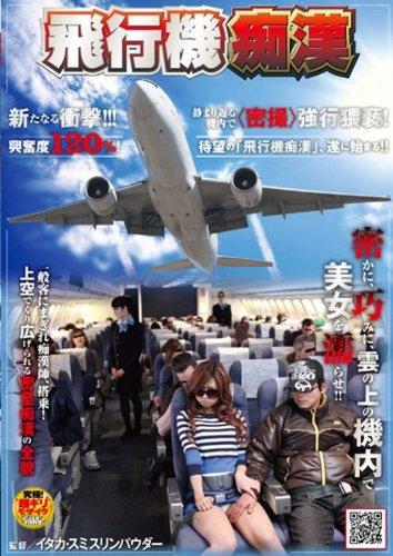 飛行機痴漢 [DVD]
