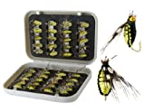 40-Pieces Larvae Design Single Hook Fishing Lure with Box