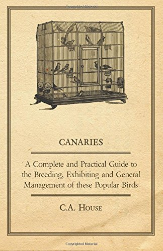 Canaries - A Complete and Practical Guide to the Breeding, Exhibiting and General Management of These Popular Birds
