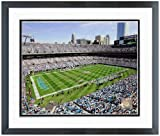 "Carolina Panthers Bank of America Stadium NFL Photo 12.5"" x 15.5"" Framed at Amazon.com"