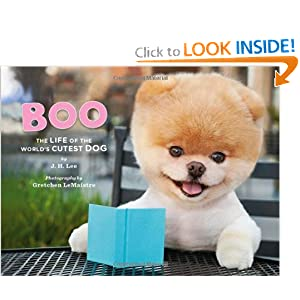 Boo: The Life of the World's Cutest Dog Book