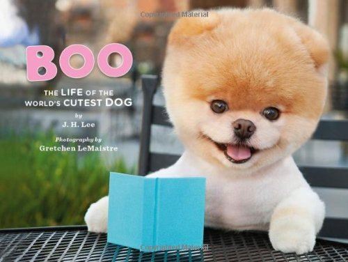 Boo. The Life Of The Cutest Dog