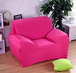 BiiPro Sofa Cover Slipcover, Stretch Spandex Machine Washable Material, Protect Furniture from Pets and Spills, Solid Colors, 10 Different Colors Available