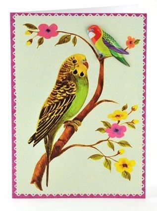 Petra Boase Tin Badge Card - Green Budgie front-56116