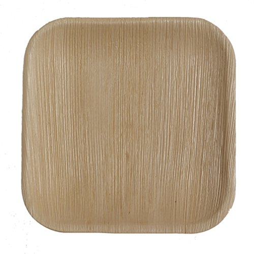 Table To Go 200-Piece Palm Leaf Square Salad Plates, 7-Inch