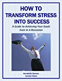 img - for How to Transform Stress Into Success: A Guide to Achieving Your Goals Even In A Recession (Mind Matters Book 4) book / textbook / text book