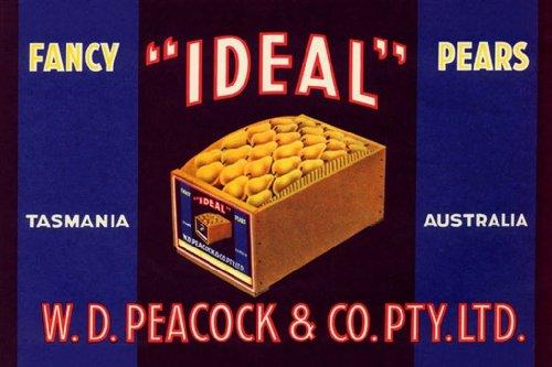 Ideal Fancy Pears - Tasmania - Australia, 20X30 Canvas Giclée, Gallery Wrap front-796740