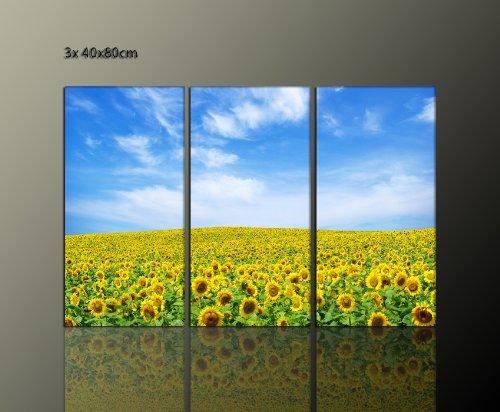 Sonnenblume-Bild-Wand-deko-ber-Ihrem-Siedboard-3-teilig-Leinwandbild-sunflower-3x40x80cm-zeitlos-brillante-Farben-Sommerlaune-moderne-Bilder-fertig-gerahmt-auf-Keilrahmen-xxl-Kunstdruck-auf-Leinwand-i