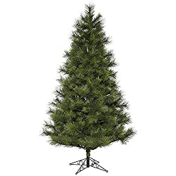12ft Feet Pine Christmas Tree With Free Decorations (Green)