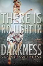 There is No Light in Darkness (Darkness Series)