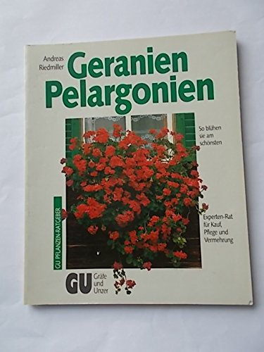 geranien pelargonien so bl hen sie am sch nsten. Black Bedroom Furniture Sets. Home Design Ideas