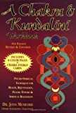 A Chakra & Kundalini Workbook: Psycho-Spiritual Techniques for Health, Rejuvenation, Psychic Powers & Spiritual Realization (1567184731) by Mumford, Jonn