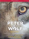 Prokofiev: Peter And  Wolf [DVD] [2010] [NTSC]