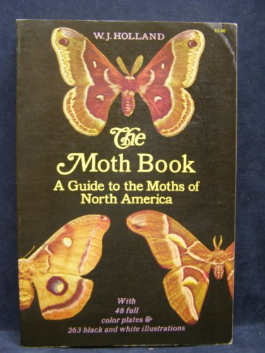 the-moth-book-a-guide-to-the-moths-of-north-america