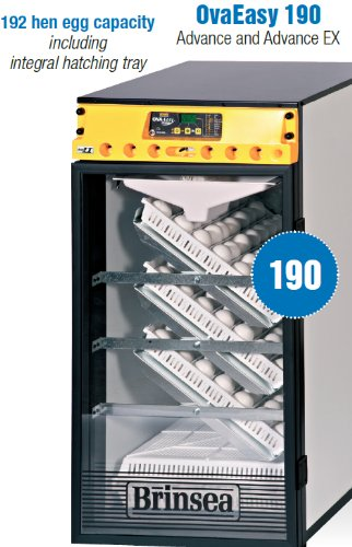 BGB Ova Easy 190 Advance Cabinet Incubators (Cabinet Incubator compare prices)