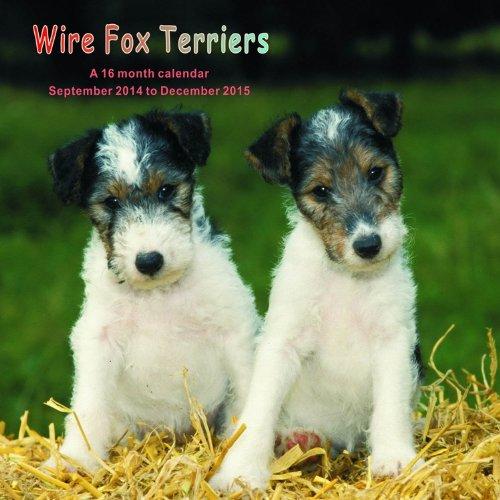 Wire Fox Terriers Calendar - 2015 Wall calendars - Dog Calendars - Monthly Wall Calendar by Magnum
