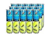 ブリヂストン(BRIDGESTONE) テニスボール TOUR PRO(ツアープロ)4球入 1箱(15缶/60球)