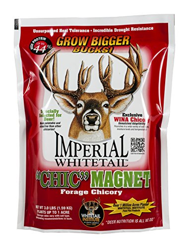 Whitetail Institute Imperial Chic Magnet Food Plot Seed, 3 lb (Imperial Food Plot Seed compare prices)