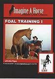 Foal Training I