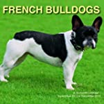 French Bull dogs A 16 month calendar...