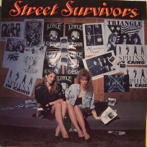 Street Survivors