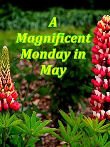 A magnificent Monday in May