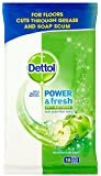 Dettol Complete Clean Anti-Bacterial Floor Wipes 15 Wipes - Extra Large, Green Apple, Pack of 3 (Total 45 Wipes)