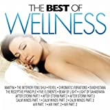 The Best of Wellness (Spa, Relaxation, Yoga, Hydrotherapy, Harmony for Brain Power, Fitness and Workout)