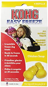 KONG Easy Freeze Chicken Soup Refills Frozen Dog Treats, 4-Refills