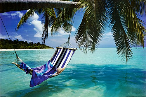 Tropical Beach (Hammock Under Tree, Huge) Art Poster Print Giant Poster 54 x 39in (54 X 39 Frame compare prices)