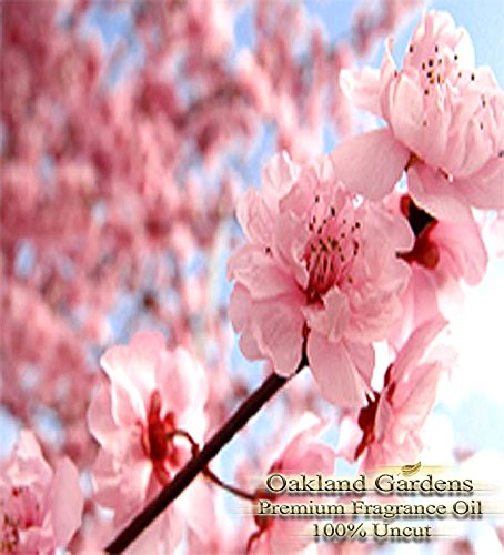 JAPANESE CHERRY BLOSSOM Fragrance Oil – 100% Pure Premium Grade Oil – Tender cherry blossom, sensual white lily and blushing violet petals blended with a hint of warm vanilla – BULK Frangrance Oil By Oakland Gardens (120 mL – 4.0 fl oz Bottle)