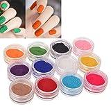 Insten Nail Art Velvet Flocking Glitter Set, 12 Color